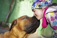 Hond die een klein meisje kussen Stock Foto's