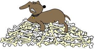 Hond die een stapel van beenderen beschermt Royalty-vrije Stock Afbeeldingen