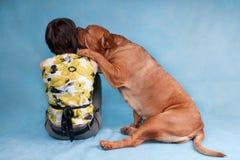 Hond die haar meisjesmeester kussen Stock Foto's