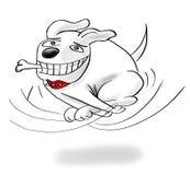 Hond die met een been lopen Royalty-vrije Stock Foto's