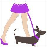 Hond die sexy benenvrouw loopt Stock Afbeeldingen