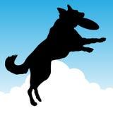 Hond die Stuk speelgoed vangen Stock Afbeelding