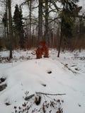 Hond die zich in sneeuw bevinden Royalty-vrije Stock Afbeelding