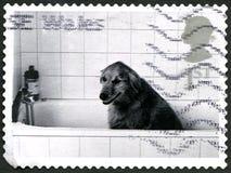 Hond in een Bad Britse Postzegel Stock Fotografie