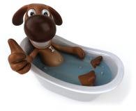 Hond in een badkuip Stock Foto's