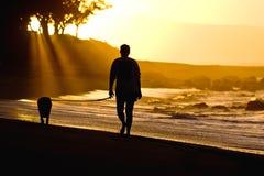 Hond en eigenaar op zonsondergangstrand Stock Foto
