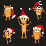 Hond en kat in Kerstmishoed Nieuwe jaarreeks Royalty-vrije Stock Fotografie
