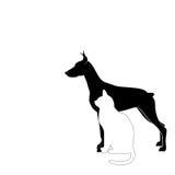 Hond en kattensilhouet Stock Fotografie