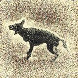 Hond en nevelregen