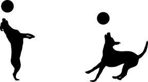 Hond en schijf Stock Afbeelding