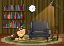 Hond en woonkamer Stock Afbeeldingen