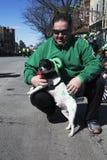 Hond gekleed in groene, St Patrick Dagparade, 2014, Zuid-Boston, Massachusetts, de V.S. Stock Foto's