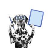 Hond in glazen die een potlood en een kader houden stock afbeeldingen