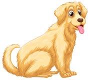 Hond het hijgen Royalty-vrije Stock Afbeeldingen
