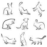 Hond, kat, konijn dierlijke tekening Stock Fotografie