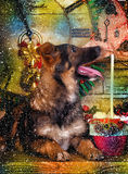 Hond in Kerstmis Royalty-vrije Stock Afbeelding
