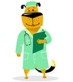 Hond in kostuum van arts Huisdier als dierenarts met met een stethoscoop a Royalty-vrije Stock Fotografie
