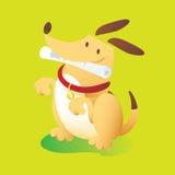 Hond met Dagboek royalty-vrije stock fotografie