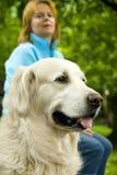 Hond met eigenaar Stock Afbeelding