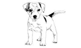 Hond met inkt op witte achtergrond wordt getrokken die Stock Foto
