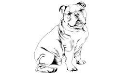 Hond met inkt op witte achtergrond wordt getrokken die Royalty-vrije Stock Foto's