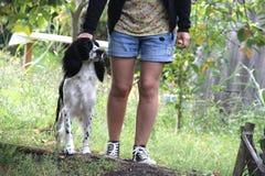 Hond naast zijn eigenaar Stock Afbeeldingen