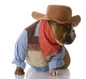 Hond omhoog gekleed als cowboy Royalty-vrije Stock Foto's