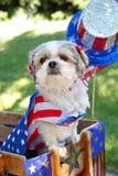 Hond omhoog gekleed voor vierde van de parade van Juli