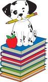 Hond op Boeken Stock Afbeeldingen