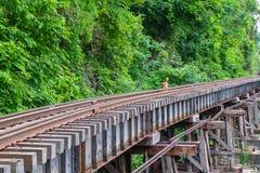 Hond op de brug van de Doodsspoorweg bij Krasae-Hol Stock Afbeeldingen
