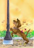 Hond op een leiband Royalty-vrije Stock Foto