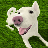 Hond op het gras vector illustratie