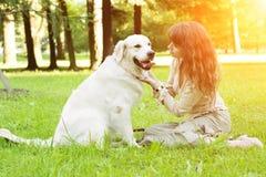 Hond opleiding Meisje met retriever het spelen in het park Vrouw wal stock afbeeldingen
