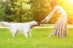 Hond opleiding Meisje met retriever het spelen in het park Vrouw wal stock foto's