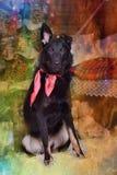 Hond pooch met een rode sjaal rond zijn hals op Kerstmis backgr royalty-vrije stock afbeelding