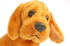 Hond - stuk speelgoed Royalty-vrije Stock Fotografie