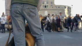 Hond van de blinde de petting gids, persoon met gezichtsstoornissen klaar om straat te kruisen stock video