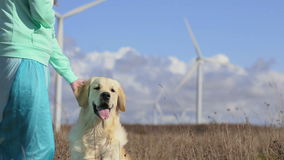 Hond, vrouw en windmolens stock video
