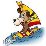 Hond Windsurfer Stock Afbeelding