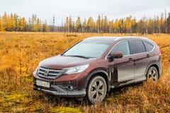 Honda CR-V Royalty Free Stock Photo