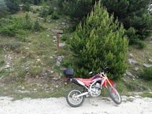 Honda för Thassos Isnald cykelaffärsföretag crf 250 royaltyfria bilder