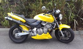 Honda hornet. A yellow motorbike, photo taken with a samsung galaxy core prime Stock Images