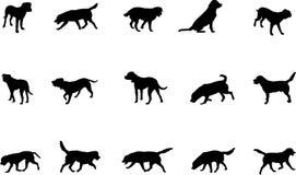 Honden royalty-vrije illustratie