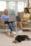 Honden en familie Stock Foto's