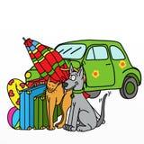 Honden en katten op vakantie Stock Afbeeldingen