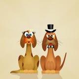 Hondenpaar royalty-vrije illustratie