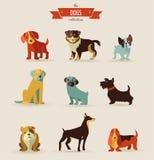 Hondenpictogrammen en illustraties Stock Afbeeldingen