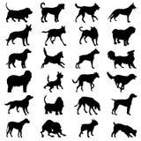 Hondenpictogrammen geplaatst voor om het even welk gebruik groot Vector eps10 Royalty-vrije Stock Afbeeldingen