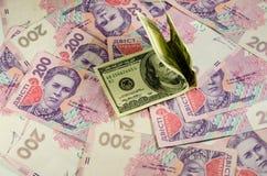 Honderd dollarsbankbiljetten op de achtergrond van Oekraïense hry Stock Afbeeldingen