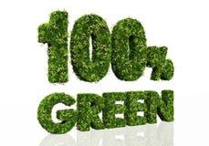 Honderd percenten groen Stock Afbeeldingen